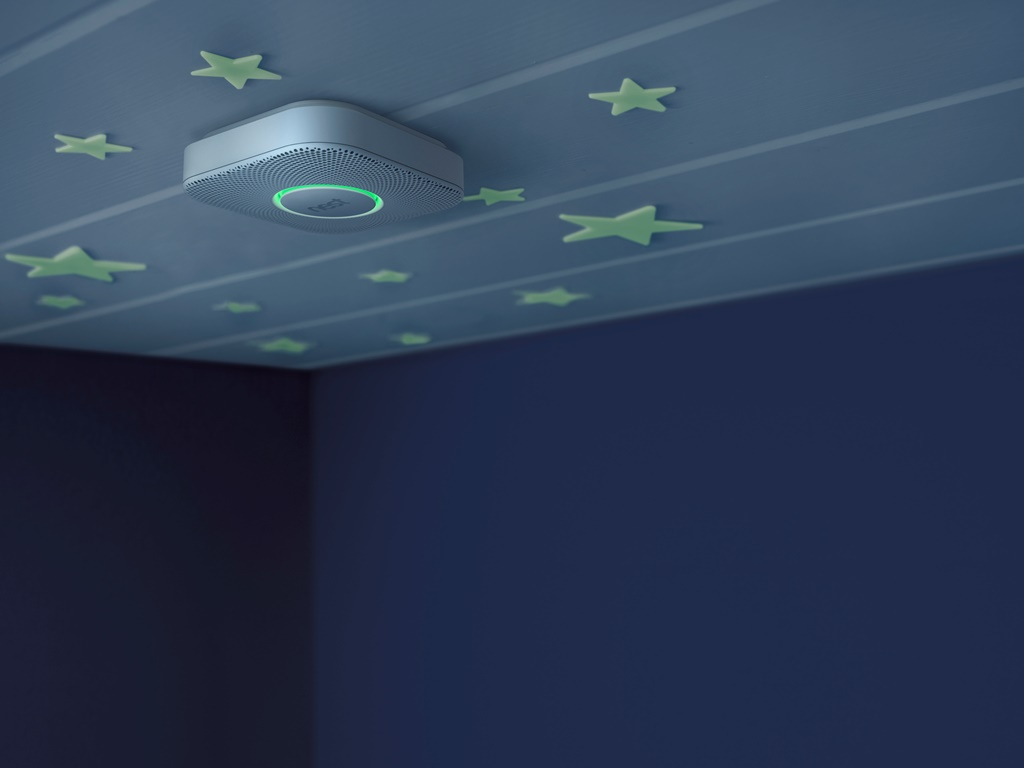 Google's acquisition of Nest could lead to a wide range of smart energy saving gadgets