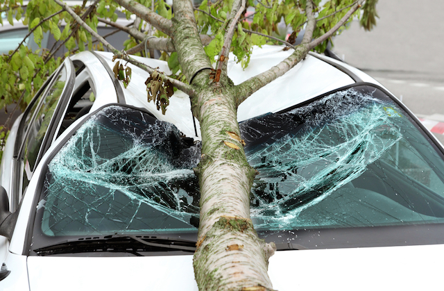car damaged by storm